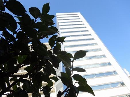 建物のイメージ画像